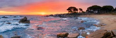 Bunker Bay Shelly Beach image