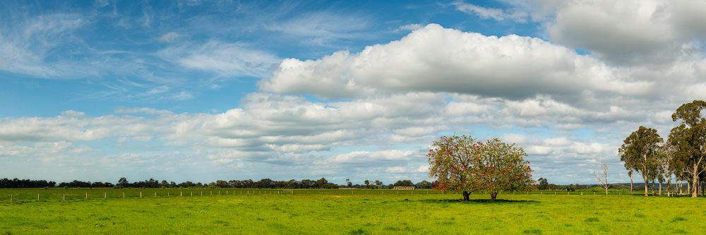 BUS24e - Busselton Farm