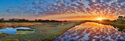 Wonnerup-Wetlands photo