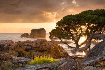 Gannet Rock Meelup landscape photography