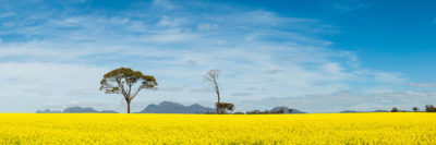 Stirling Ranges Western Australia landscape photography
